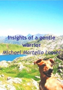 Insights of a gentle warrior